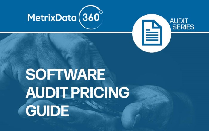 How Much Does Hiring A Software Audit Consultant Cost?