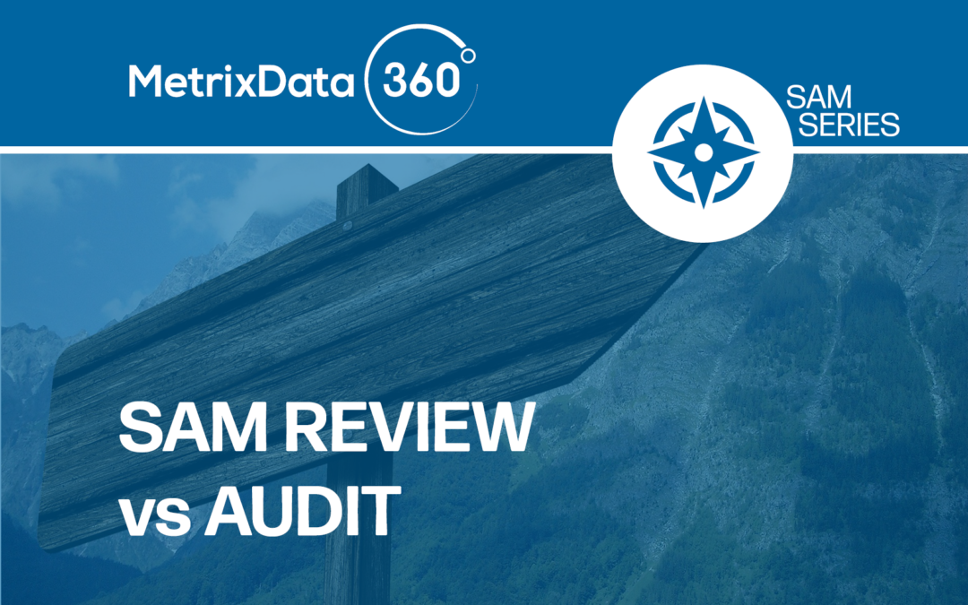 Software Asset Management (SAM) Review vs Audit: What's the Difference?