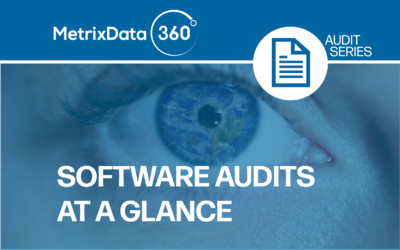 Microsoft, Oracle, IBM, and Adobe Software Audits at a Glance