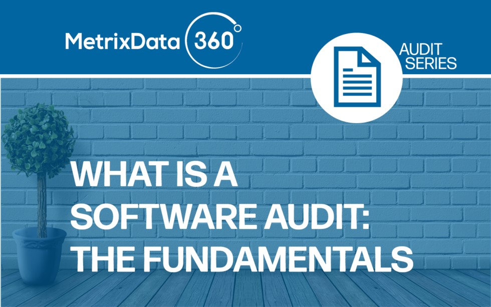 What is a Software Audit: The Fundamentals