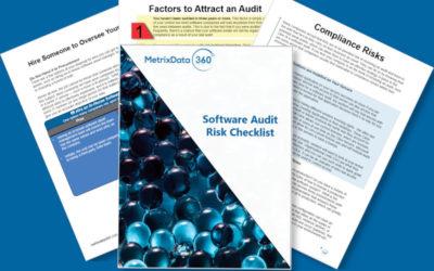 Software Audit Risk Assessment Checklist