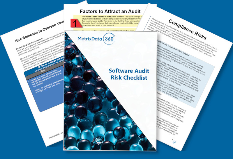 Software Audit Risk Assessment Checklist