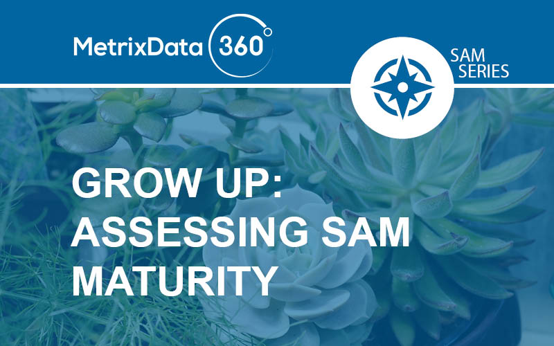 SAM Maturity: What It Is & How To Measure It