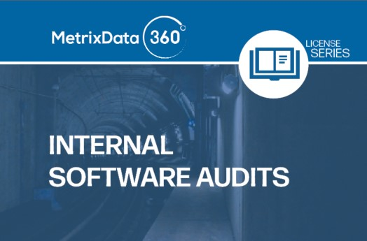Internal Software Audit