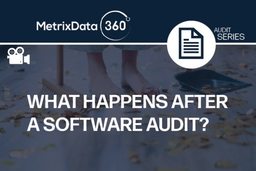 What Happens After a Software Audit?